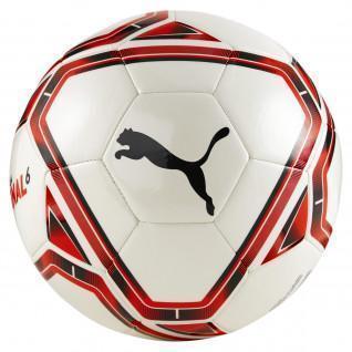 Ballon teamFINAL 21.6 MS