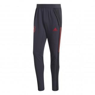 Pantalon Bayern Ultimate Training 2020/21